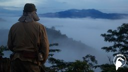 Kokoda - The Invasion