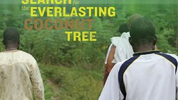 Search For The Everlasting Coconut Tree