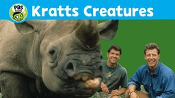 Kratts' Creatures